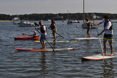 Paddle for the Bays