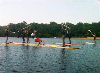 Family group doing stand up and paddle on Cape Cod.
